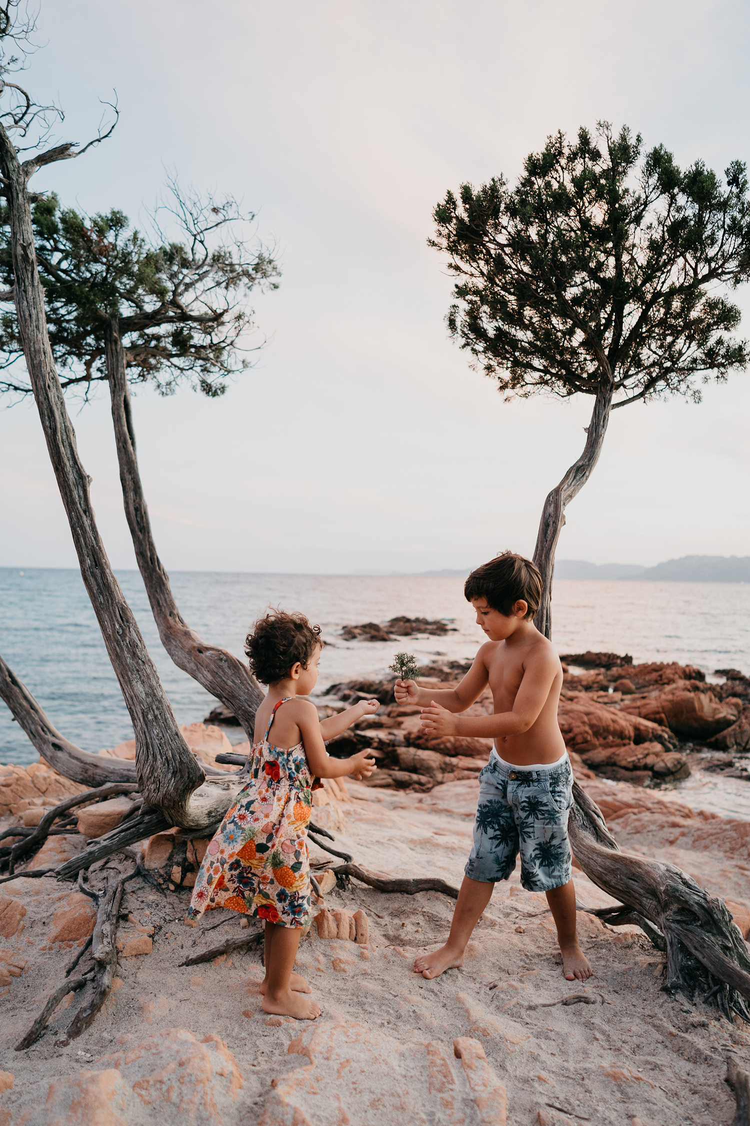 brother handing flower to sister on pink rocks during family lifestyle photo session in palombaggia beach, santa giulia. Corsica. by rebecca rinaldi photography