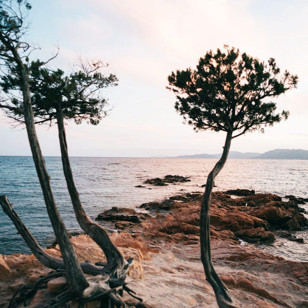 Servizio fotografico reportage di Famiglia. Panorama mare e roccia rosa  al tramonto. Palombaggia, Santa Giulia, Corsica. by rebecca rinaldi photography